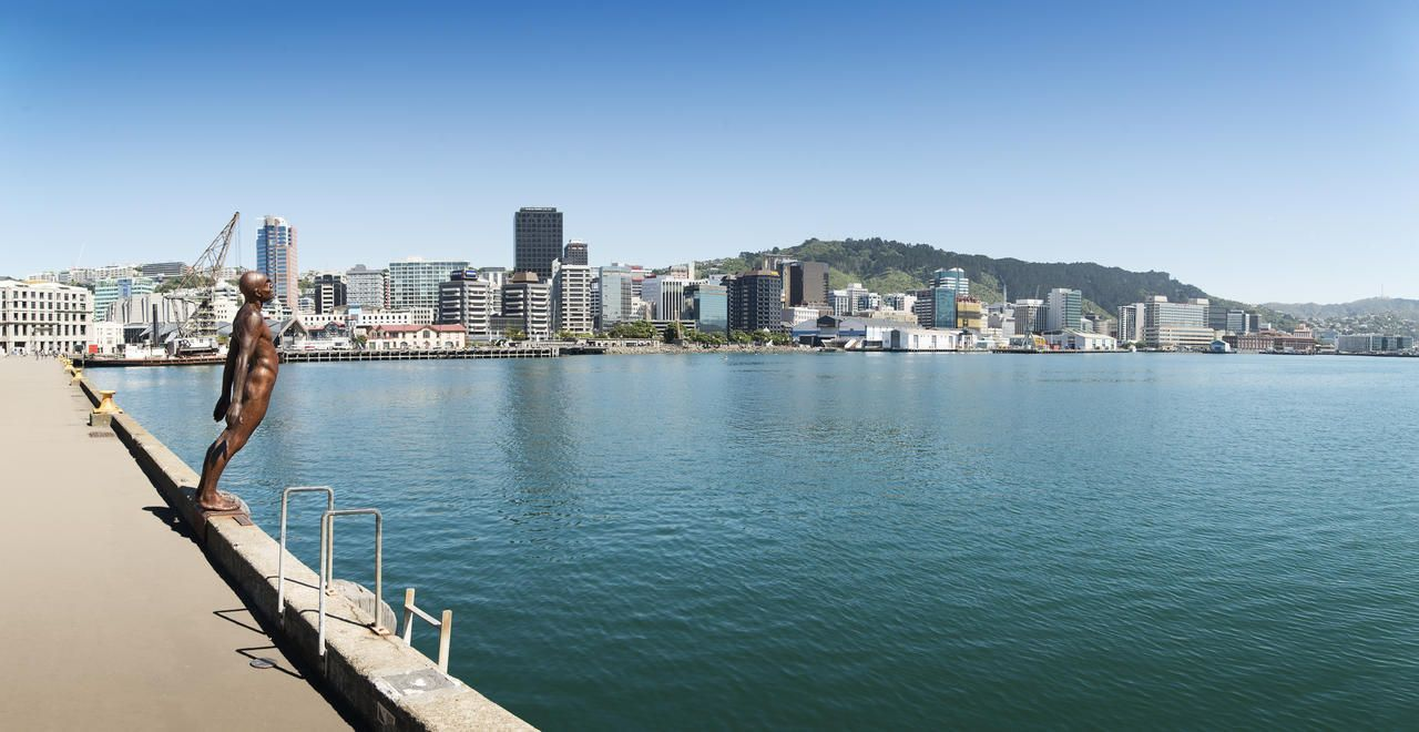 Getting Around New Zealand | Travel Options | NZ Travel Guide