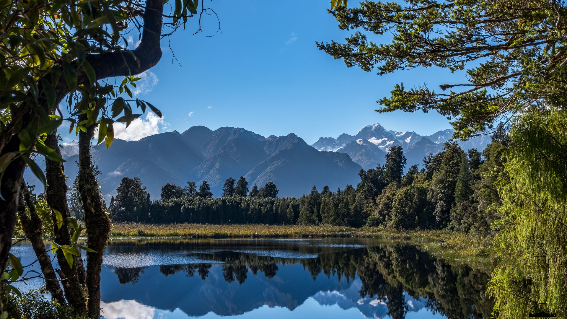 Lake Matheson NZ | Once Upon A Trip