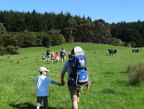Photo from 23 Day New Zealand Hiking Trip Itinerary - Day 9 & 10: Kaipara walk